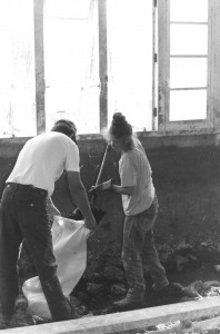 barn cleanup 2
