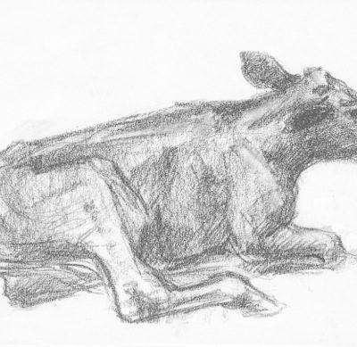 erica calf