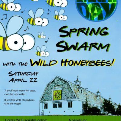 spring swarm 2017 final