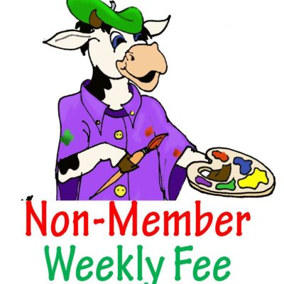 weekly fee non member