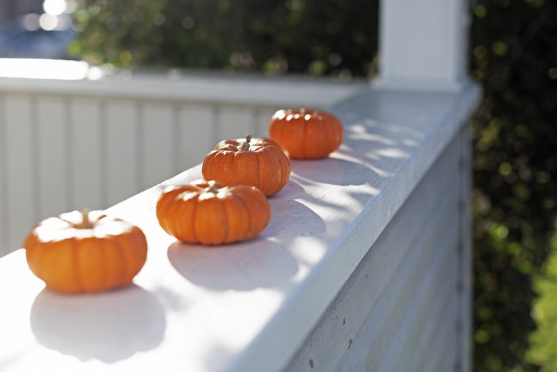 The Dairy Barn Arts Center will host its annual Pumpkin Fest for families on Saturday.